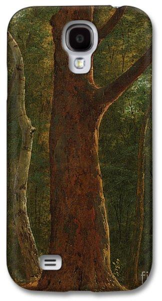 Beech Tree Galaxy S4 Case