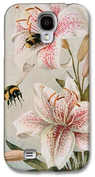 Bees And Lilies Galaxy S4 Case by Louis Fairfax Muckley