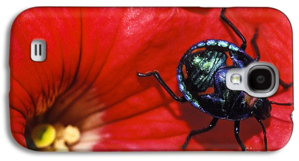 Beetle On A Hibiscus Flower. Galaxy S4 Case by Sean Davey