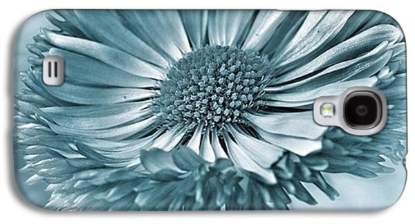 Summer Galaxy S4 Case - Bellis In Cyan  #flower #flowers by John Edwards