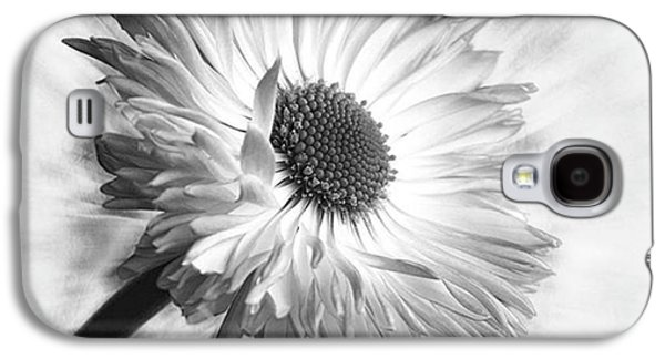 Summer Galaxy S4 Case - Bellis In Mono  #flower #flowers by John Edwards