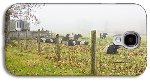 Belted Galloway Cows Farm Rockport Maine Photograph Galaxy S4 Case by Keith Webber Jr