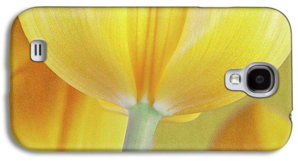 Tulip Galaxy S4 Case - Beneath The Yellow Tulip by Tom Mc Nemar