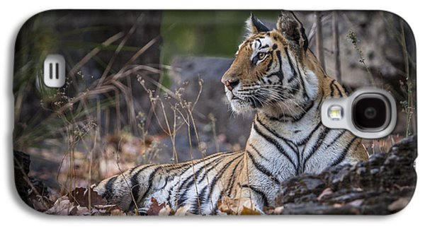Bengal Tiger Galaxy S4 Case