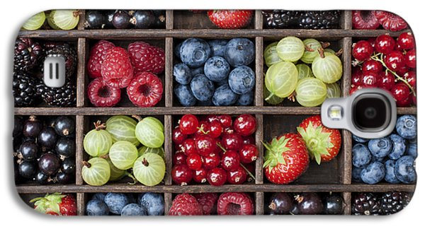 Berry Harvest Galaxy S4 Case