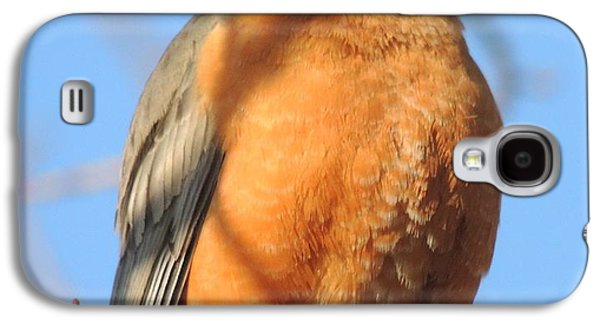Beverly Hills Birdie Galaxy S4 Case by Todd Sherlock