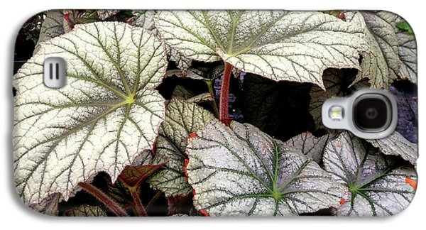 Big Begonia Leaves Galaxy S4 Case