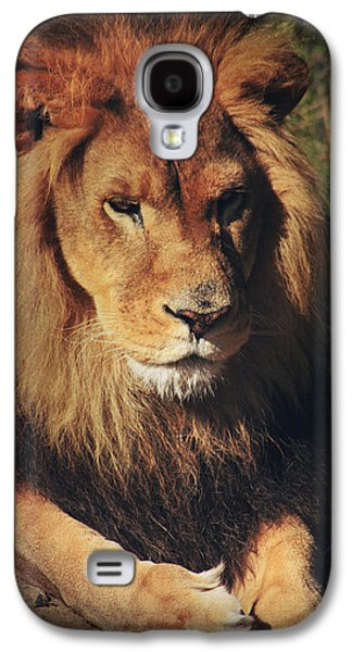 Searching Digital Art Galaxy S4 Cases - Big Boy Galaxy S4 Case by Laurie Search