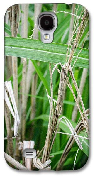 Big Grass Blade Galaxy S4 Case by Amy Turner