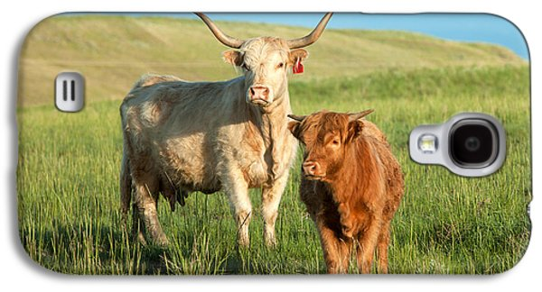 Cow Galaxy S4 Case - Big Horn, Little Horn by Todd Klassy