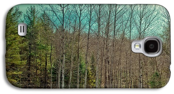 Birch Trees In The Spring Galaxy S4 Case