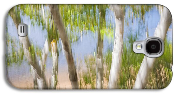 Birch Trees On Lake Shore Galaxy S4 Case