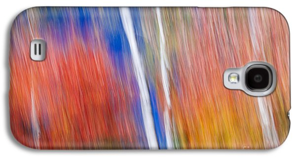 Birches In Red Forest Galaxy S4 Case by Elena Elisseeva