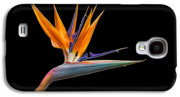Bird Of Paradise Flower On Black Galaxy S4 Case