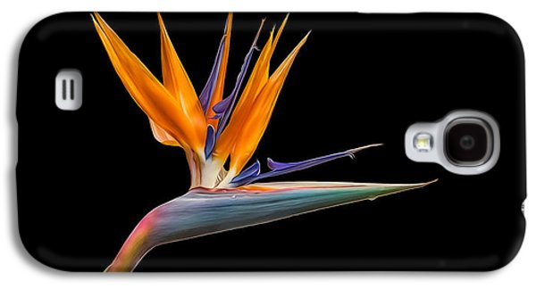 Galaxy S4 Case featuring the photograph Bird Of Paradise Flower On Black by Rikk Flohr