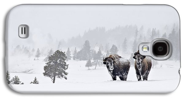 Galaxy S4 Case featuring the photograph Bison In The Snow by Gary Lengyel