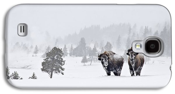 Bison In The Snow Galaxy S4 Case