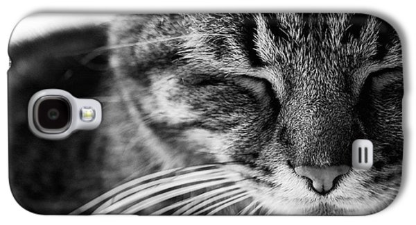 Black And White Cat Nap Galaxy S4 Case by Rachel Morrison