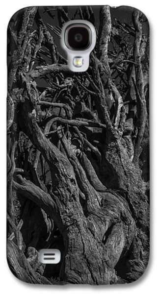 Black And White Roots Galaxy S4 Case by Garry Gay