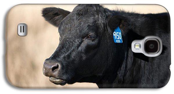 Black Angus Cow Galaxy S4 Case
