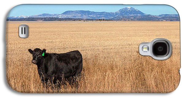 Black Angus Looking Galaxy S4 Case by Todd Klassy