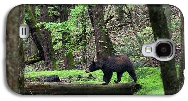 Black Bear Crossing Log In Woods Galaxy S4 Case