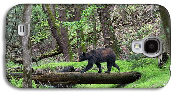 Black Bear Walking Across Log Galaxy S4 Case
