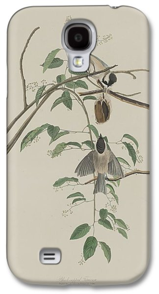 Titmouse Galaxy S4 Case - Black-capped Titmouse by Dreyer Wildlife Print Collections