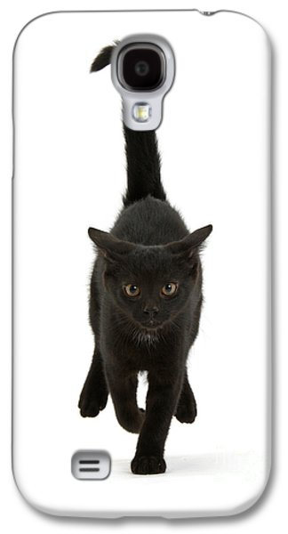 Black Cat On The Run Galaxy S4 Case