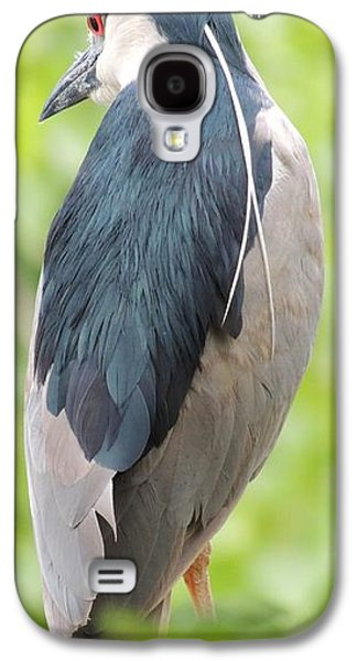 Black Crowned Night Heron Galaxy S4 Case by Todd Sherlock