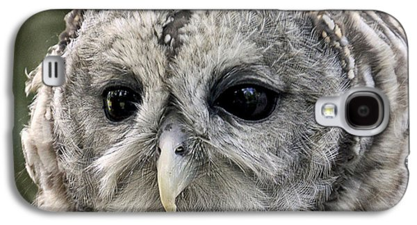 Black Eye Owl Galaxy S4 Case
