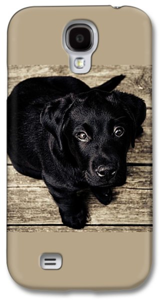 Black Lab Pup Galaxy S4 Case by Andre Spieker