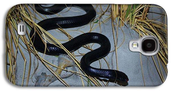 Wild Racers Galaxy S4 Case - Black Snake by Cynthia Guinn