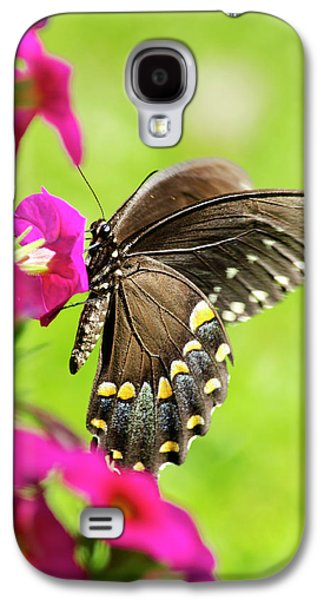 Galaxy S4 Case featuring the photograph Black Swallowtail Butterfly by Christina Rollo