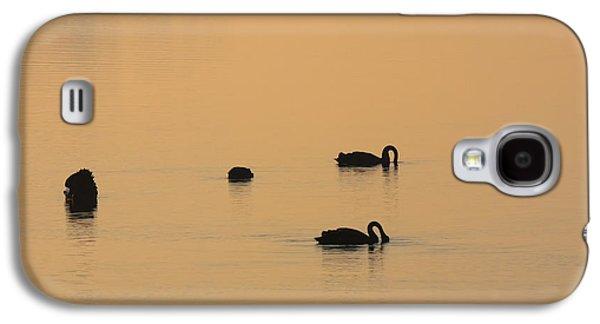 Black Swan Dawn Galaxy S4 Case by Mike Dawson