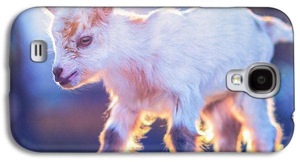 Little Baby Goat Sunset Galaxy S4 Case by TC Morgan