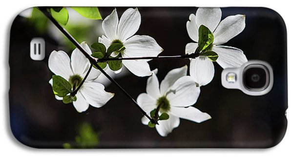 Blooming Dogwoods In Yosemite 4 Galaxy S4 Case by Larry Marshall