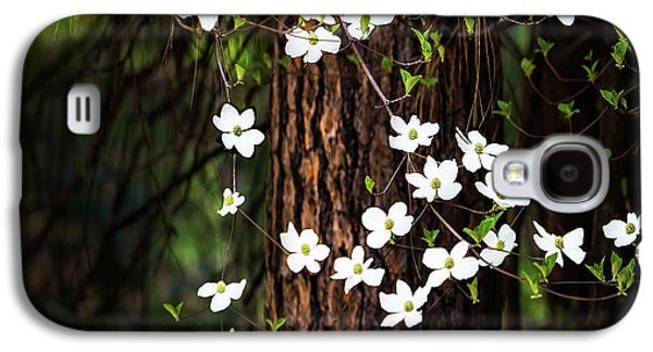 Blooming Dogwoods In Yosemite Galaxy S4 Case