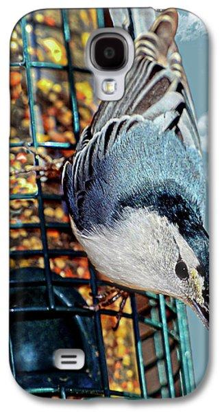 Blue Bird On Feeder Galaxy S4 Case by Susan Leggett
