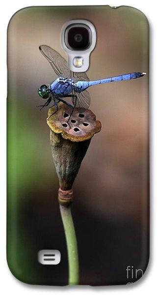 Dragon Photographs Galaxy S4 Cases - Blue Dragonfly Dancer Galaxy S4 Case by Sabrina L Ryan