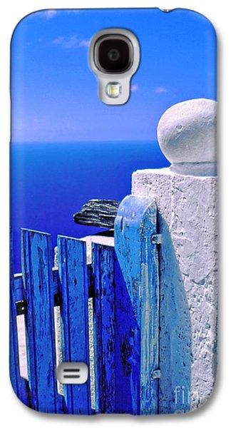 Blue Gate Galaxy S4 Case