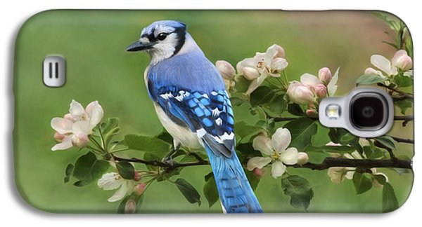 Blue Jay And Blossoms Galaxy S4 Case