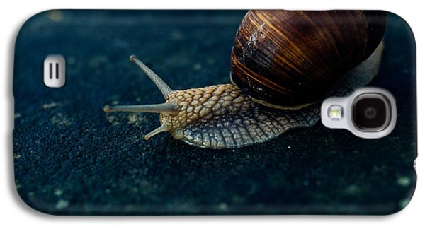 Blue Snail Galaxy S4 Case by Pati Photography