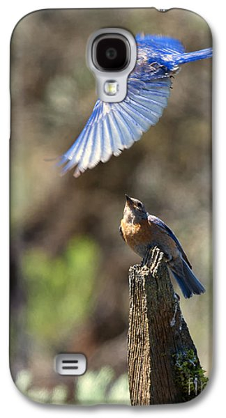 Bluebird Buzz Galaxy S4 Case by Mike Dawson