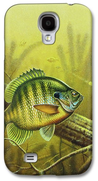 Fish Pond Galaxy S4 Cases - Bluegill and Jig Galaxy S4 Case by JQ Licensing