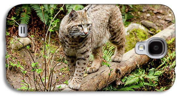 Bobcat In Forest Galaxy S4 Case by Teri Virbickis
