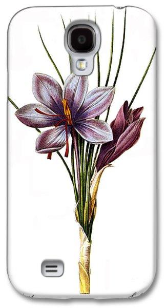 1833 Galaxy S4 Cases - Botany: Saffron Galaxy S4 Case by Granger