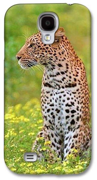 Botswana Leopard  Galaxy S4 Case by Happy Home Artistry