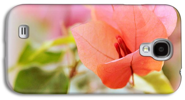 Bougainvillea Whispers Galaxy S4 Case by Jessica Jenney