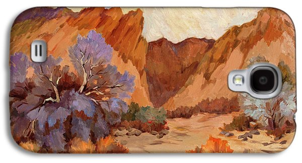 Country Scenes Galaxy S4 Cases - Box Canyon Galaxy S4 Case by Diane McClary